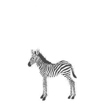 fotobehang zebra's zwart wit