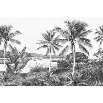 fotobehang landschap met palmen zwart wit
