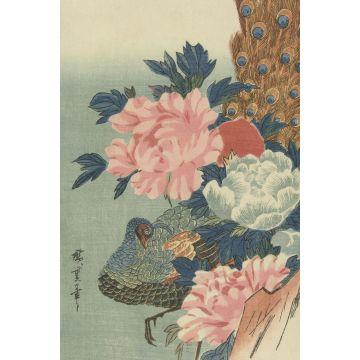 fotobehang pauw en pioenrozen oudroze, groen en blauw