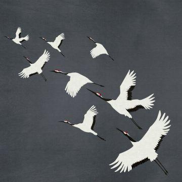 fotobehang kraanvogels donkergrijs